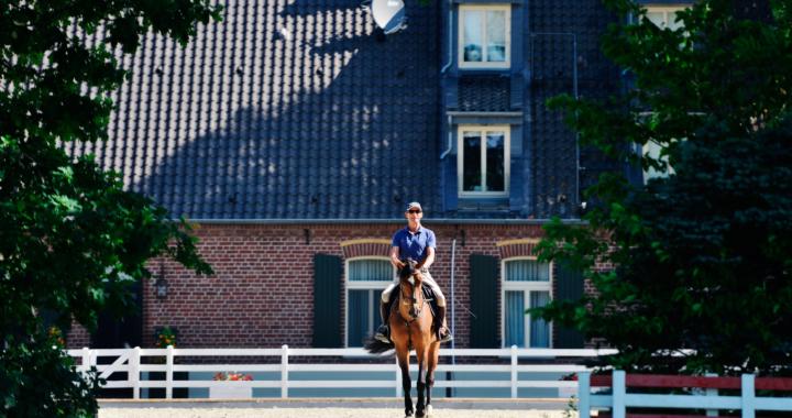 Weltpremiere: Hetzel Horses startet Online-Auktion für Pferde bis 100.000 EUR