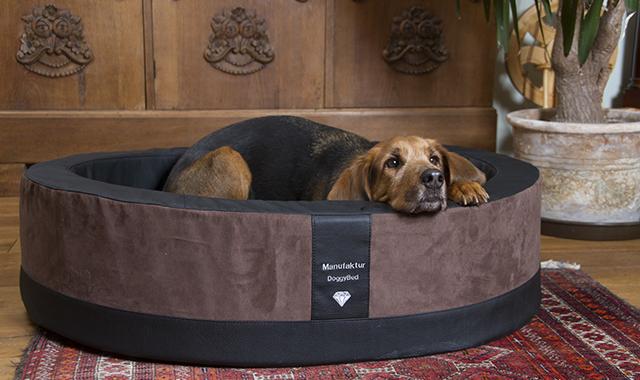 DOGGYBED®, das moderne Hundebett