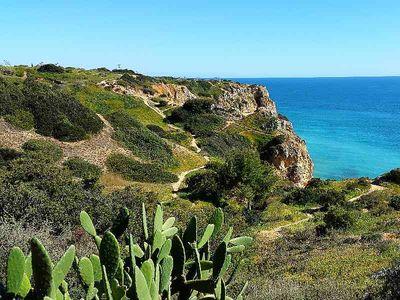 Anders reisen an der Algarve – Urlaub für Naturliebhaber