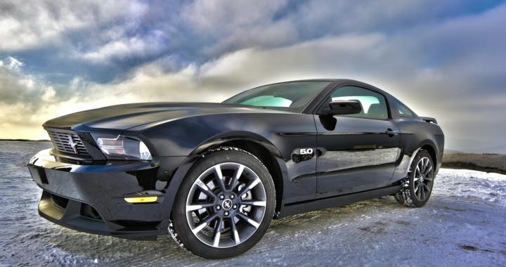 Transparenz und Kostenkontrolle mit dem Ford Video-Check