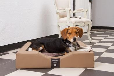 DoggyBed – das exklusive GEL-Hundebett