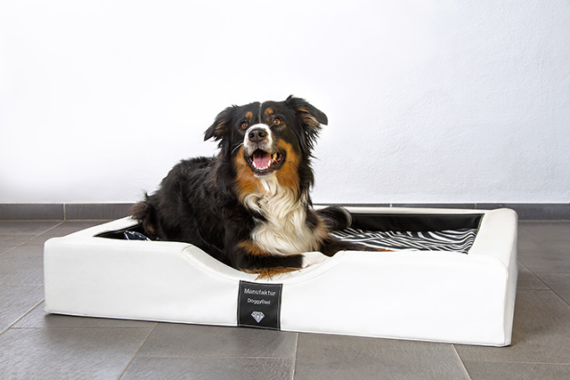 DoggyBed – das einzigartige GEL – Hundebett!