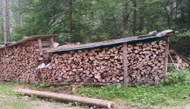 Heizen mit Holz: Die private Wärmewende im Wohnzimmer