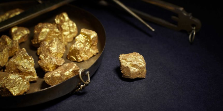 """""""Gold-Backed"""" Crypto Token""""s Promoter Investigated by Florida Regulators"""