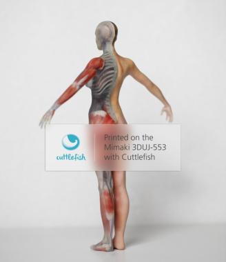 3D-Druckertreiber Cuttlefish von Fraunhofer jetzt auch für Mimaki-Drucker