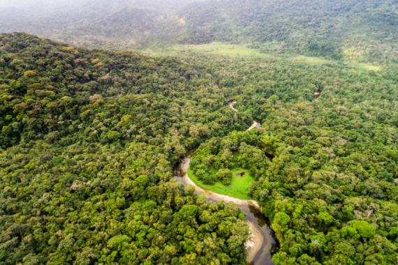 Bekenntnis zu Nachhaltigkeit – Santander klimaneutral ab 2020