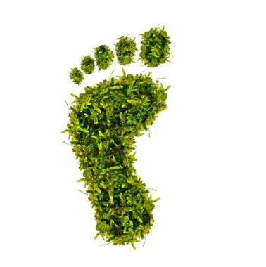 """Schwarzwälder Versicherung erweitert Nachhaltigkeitskonzept und launcht """"Privathaftpflicht Green Fair Play"""""""