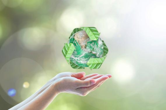 Nachhaltige Verpackungsalternativen in Zeiten drohender EU Verbote