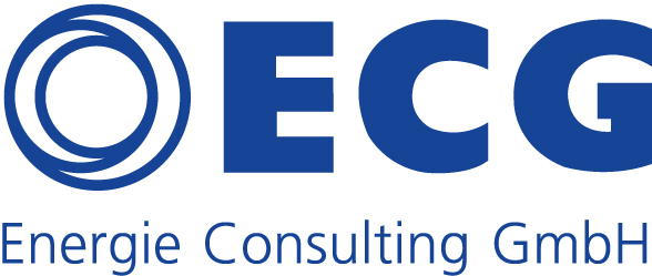 Corona & Energieversorgung: ECG beantwortet akute Fragen der Industrie