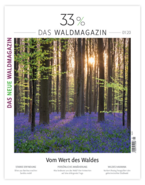 Neues Waldmagazin am Start
