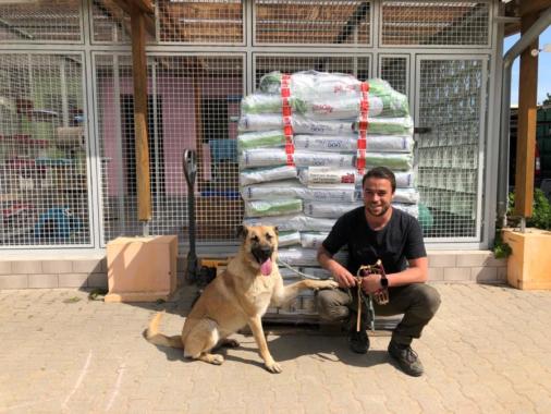 Corona-Krise: Notfallhilfe erreicht elf Tierschutzvereine
