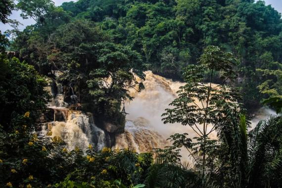 Enchanting Travels gleicht ab sofort CO2-Emissionen für alle Reisen aus