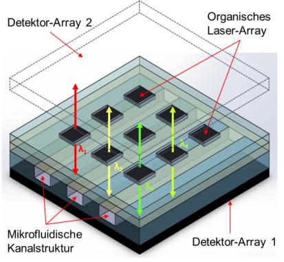 On-Chip Laser-Absorptionsspektrometer macht kleines Analysegerät möglich