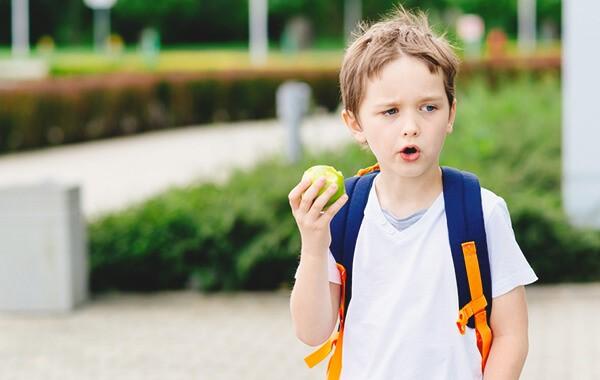 fruiton liefert Obst, Gemüse und Milch an Schulen in NRW und Rheinland-Pfalz