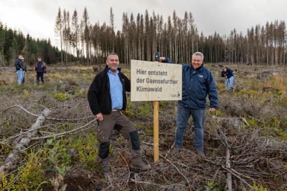 Gaensefurther Schlossbrunnen pflanzt 2.000 Bäume im Harz