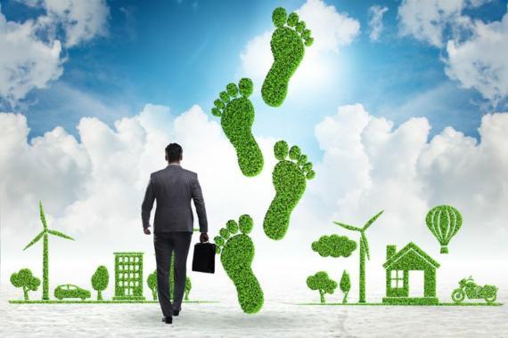 Verbraucherschutz bei der CO2-Kompensation