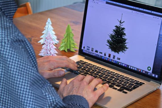 Verderbliche Ware: Weihnachtsbaum aus dem Internet