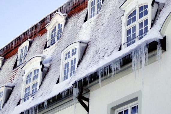 Keine Gefahren durch Schneeglätte und Frostschäden