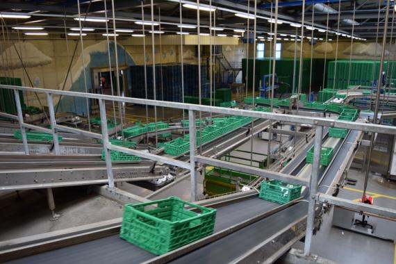 IFCO-Waschzentren in Spanien nach ISO 45001 zertifiziert